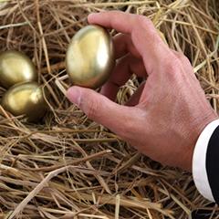 nest-egg-240